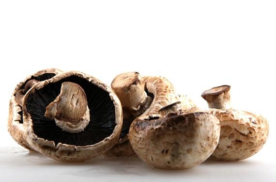 night16_mushrooms.jpg