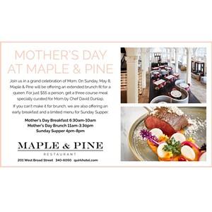 quirk_maple_pine_12h_0420.jpg