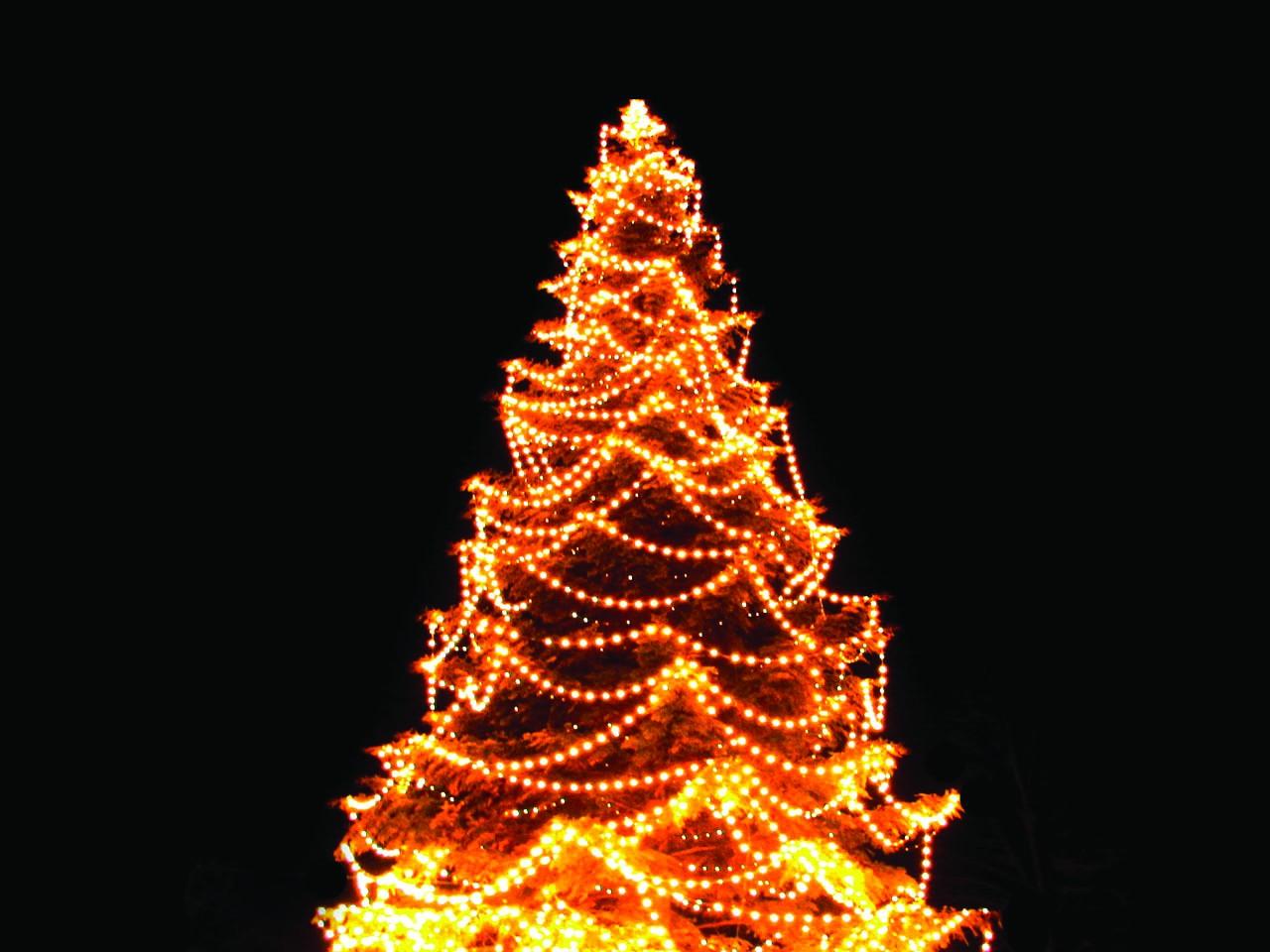 click to enlarge christmas tree lights 7jpg