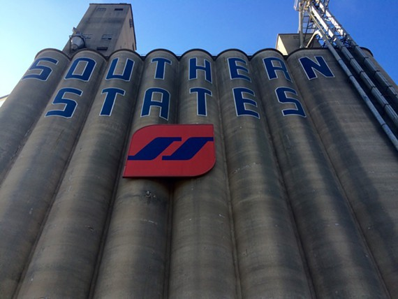 The iconic Southern States silos in Manchester will be painted over as part of the 2016 RVA Street Art Festival, which will announce its new date this fall. - FILE
