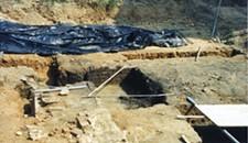 Excavating the Past