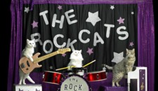 Event Pick: The Amazing Acro-Cats at the Gottwald Playhouse
