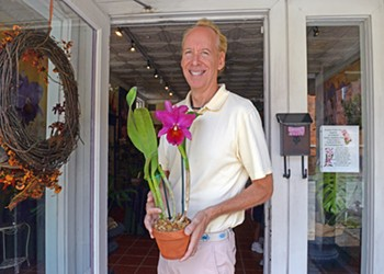 A rare orchid grower in the Fan is still trying to get a flower to Melania Trump