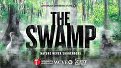 ae_films_the_swamp_cis_wcve_sm_horiz-1.png