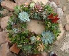 6d66825d_wreath2.jpg