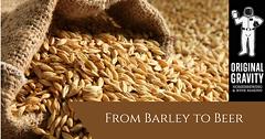 d54642ba_barley.png