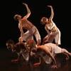 cal08_dance_100.jpg