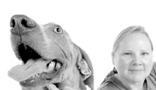 When Dogs Talk