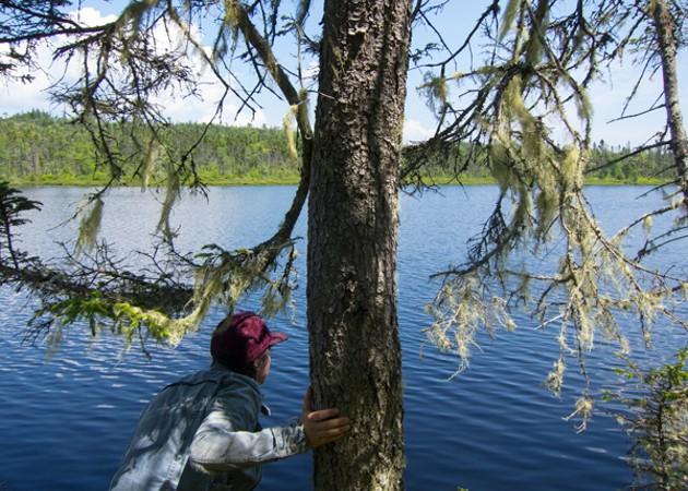 Anne Macmillan, documentation from LIttle Lakes, 2013. - KATIE MCKAY