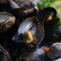 Best Mussels