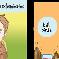 Birds… illustrated by Mike Holmes