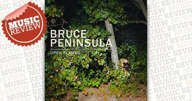bruce-review.jpg