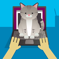 Flack attack: The first USB-powered cat bed