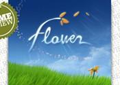 <i>Flower</i>