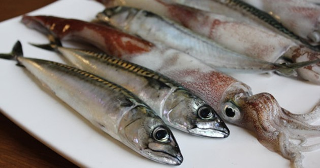 Fresh mackerel and squid, caught and bartered by two St. Lawrence Kitchen regulars. - NATALIE MIKE
