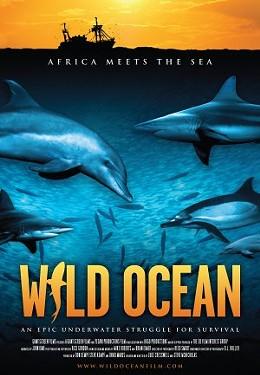wild_ocean.jpg
