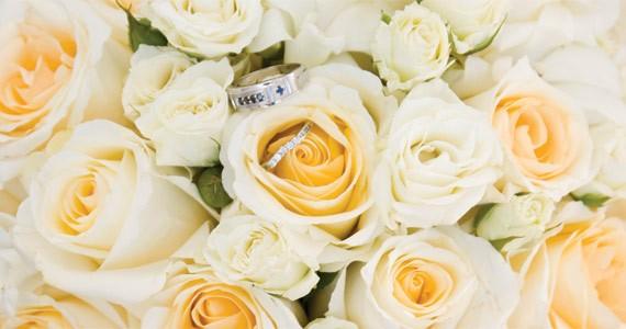 bloom-0tsr.jpg