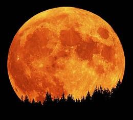 harvest_moon_jpg-magnum.jpg