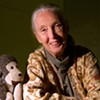 Jane Goodall's good work