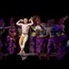 Live Gig: Cirque de Soliel