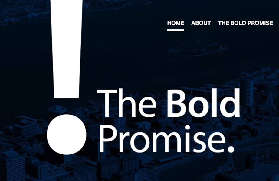 Logo from the Bold Promise website