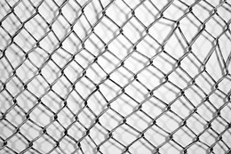 "MELANIE COLOSIMO. ""CHAIN-LINK FENCE"""