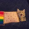 Nyan Cat flies into Halifax on a pop tart rainbow
