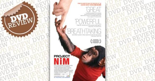 nim-review.jpg