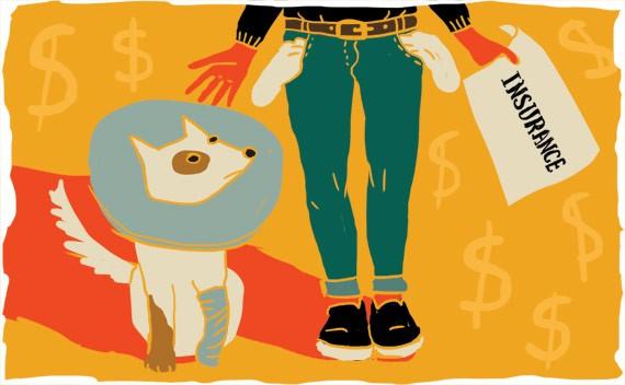 pets_insurance1.jpg
