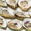 Shell Talk: eating local oysters