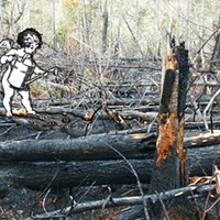 Stephen King agrees: climate change contributed to fires