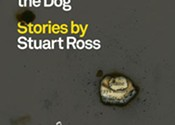 Stuart Ross' synaptic fireworks