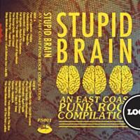 Stupid Brain: