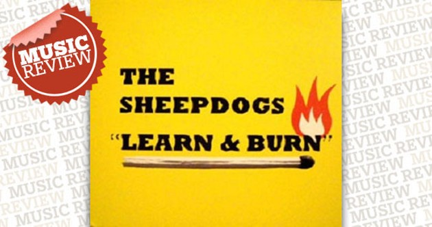 sheepdogs-review.jpg
