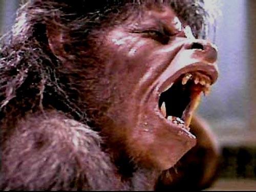 an-american-werewolf-in-london.jpg