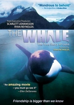 whale_poster.jpg