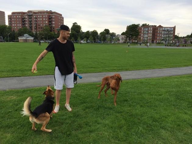 Cory Urquhart (human), Chance (black-brown) and Nitro (brown) enjoy the weather. - JONATHAN BRIGGINS