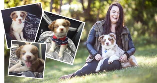 Allison Webb wants to make your pet famous, like Mason - TANSEY WHITTON