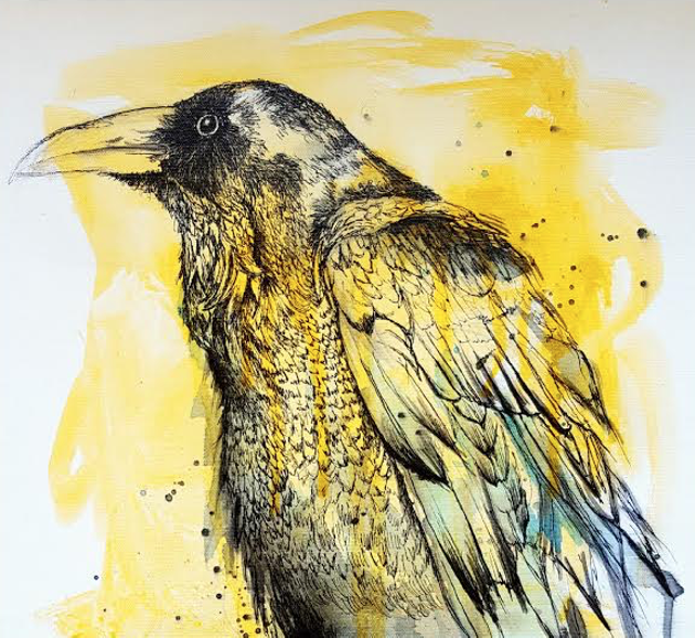 Murder at the Dart brings a thoughtful eye to crows (see number 10). - LEE CRIPPS