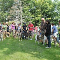 Top 10 dog-friendly events in Halifax