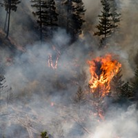 SCIENCE MATTERS: Wildfires are a climate change wake-up call