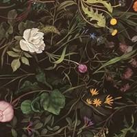 Review: Zachari Logan's <i>Topiary</i> at Anna Leonowens Gallery