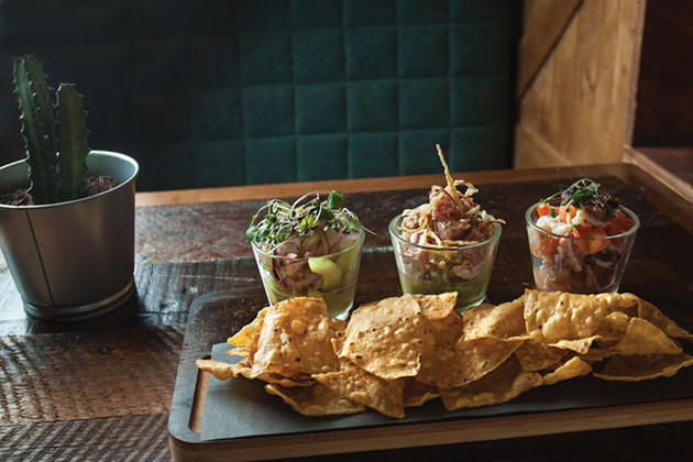 Ceviche trio with totopos - LENNY MULLINS