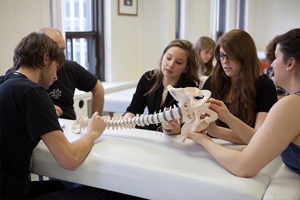 college-detudes--ostheopathiques-3.jpg