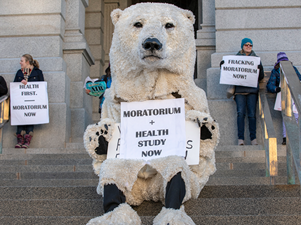 Going bear at a Colorado Rising anti-fracking rally. - TED WOOD / THE STORY GROUP