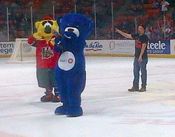 BMO the Bear skates around the Scotiabank Centre last fall. #Awkward