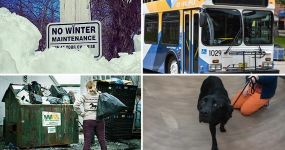 Photos via 2_canadians, Halifax Transit, Lenny Mullins and HRM.