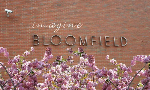 Turns out Nova Scotia's government was more dreamers than doers when it came to imagining a future for Bloomfield.
