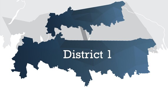 District 1 includes smaller suburban areas (Fall River, Waverley) and much larger rural stretches throughout Musquodoboit. Click here for HRM's boundary description. - AKIRA ARRUDA