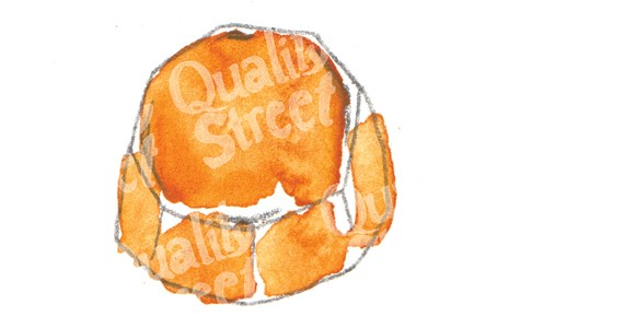 08-orange-choc-crunch.jpg